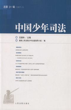 中国少年司法 总第31辑