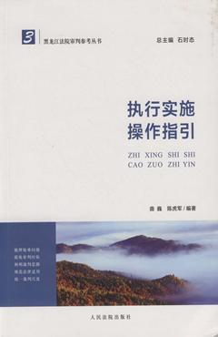 執行實施操作指引--黑龍江法院審判參考叢書